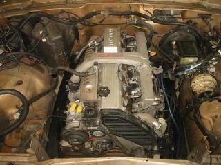 wagonia2-7.jpg