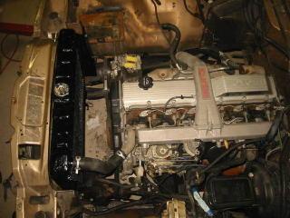 wagonia5-2.jpg