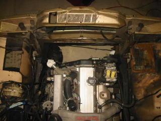 wagonia5-3.jpg